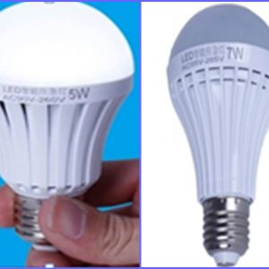 LED Rechargeable globes only